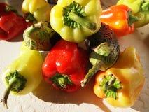 As pimentas doces búlgaras dos vegetais brilhantes, as coloridas, do contraste e a beringela vermelhas e verdes em gotas da água  Fotos de Stock Royalty Free