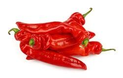 As pimentas vermelhas da paprika fecham-se isolado acima no branco Imagens de Stock