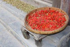 As pimentas vermelhas estão secando em uma vila chinesa velha Foto de Stock Royalty Free