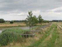 As pistas velhas de um país da pista correm através dos Países Baixos Fotos de Stock Royalty Free