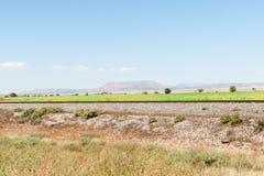 As planícies altas de New mexico ajardinam ao lado de Route 66 Fotografia de Stock Royalty Free
