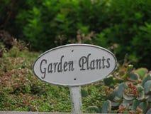As plantas de jardim com estrutura velha Fotos de Stock Royalty Free