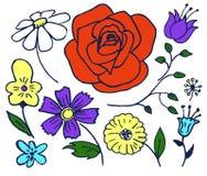 As plantas entregam a ilustração tirada do vetor do grupo de elementos ilustração do vetor