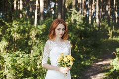 As poses da noiva do redhair na floresta Fotos de Stock Royalty Free
