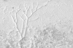 As quebras no gelo na superfície do lago fotos de stock royalty free