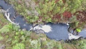 As quedas aéreas do tiro do voo de montanhas Escócia da cachoeira de Shin esverdeiam árvores video estoque