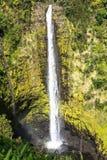 As quedas de Akaka, Havaí Imagens de Stock Royalty Free