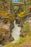 As quedas de Athabasca, a garganta, e o rio de Athabasca em Jasper National Park Foto de Stock