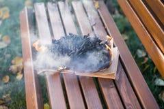 As queimaduras do livro fotos de stock