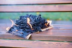 As queimaduras do livro fotografia de stock royalty free