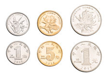 As quintas moedas ajustadas de RMB Imagem de Stock Royalty Free