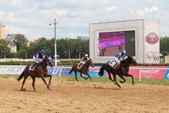 As raças foto de stock royalty free
