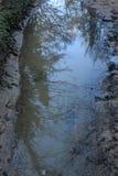 As reflexões das árvores na água estão nas montanhas fotos de stock royalty free