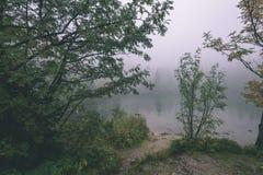 as reflexões das árvores no lago molham na névoa da manhã - vin Foto de Stock