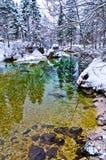 As reflexões do inverno em uma montanha fria fluem, cumes eslovenos Imagens de Stock