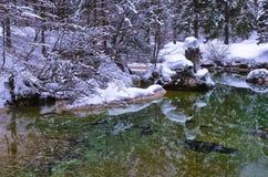 As reflexões do inverno em uma montanha fria fluem, cumes eslovenos Fotos de Stock Royalty Free