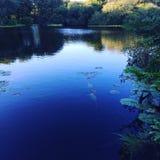 As reflexões em nuvens da água são sublimes Fotos de Stock Royalty Free