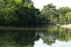 As reflexões serenos, bonitas de um lago surgem em um parque verde, tailandês luxúria Fotos de Stock Royalty Free
