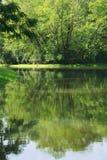 As reflexões serenos, bonitas de um lago surgem em um parque verde, tailandês luxúria Fotografia de Stock