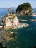 As rochas do Cormorant Foto de Stock Royalty Free