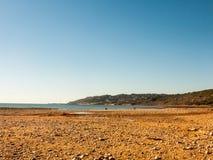 as rochas jurássicos dos penhascos de Charmouth Dorset da costa ajardinam a natureza a fotografia de stock