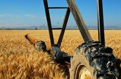 As rodas grandes de uma irrigação fazem à máquina uma trilha circular fotografia de stock royalty free