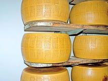 As rodas marcadas do queijo Imagens de Stock