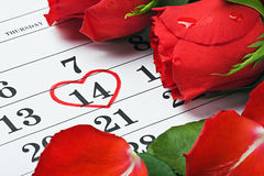 As rosas colocam no calendário com a data do 14 de fevereiro Valentin Imagem de Stock