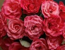 As rosas cor-de-rosa fecham-se acima do teste padrão Fotos de Stock