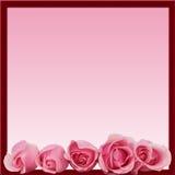 As rosas cor-de-rosa limitam a parte inferior do frame Fotografia de Stock