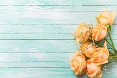 As rosas da cor do pêssego florescem no backgroun de madeira pintado turquesa foto de stock royalty free