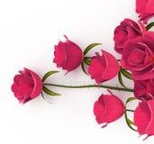 As rosas do amor representam o romance e datar da paixão Fotografia de Stock
