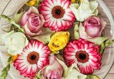 As rosas e os gerberas florescem na bacia de vidro com água, feriado Imagem de Stock Royalty Free