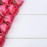 As rosas florescem no aniversário ou no dia de mãe com copyspace Fotografia de Stock Royalty Free