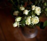 As rosas pequenas brancas bonitas frescas com água deixam cair indoor Imagens de Stock Royalty Free