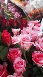 As rosas são flores bonitas que estão sendo vendidas no mercado Fotografia de Stock Royalty Free