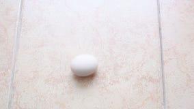 As rotações do ovo na telha video estoque