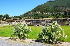As ruínas em Messene antigo Messinia Imagens de Stock