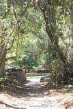 As ruínas maias de Las Sepulturas perto de Copan Imagens de Stock Royalty Free