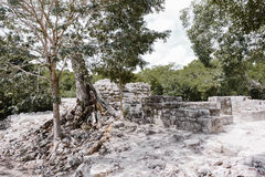 As ruínas maias pontilham a costa de Iucatão fotos de stock
