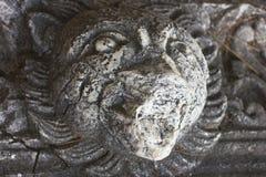 As ruínas velhas antigas do Lycian em Phaselis envelheceram pedras na cabeça do ` s do leão da floresta dos pinhos fotos de stock royalty free