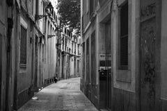 As ruas de Barcelona dispararam em preto e branco Fotografia de Stock Royalty Free