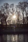 As rupturas do raio do por do sol do sol através dos ramos de árvores do outono fotos de stock