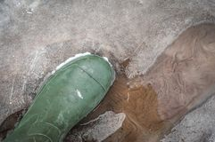 As sapatas da mola com um pântano não obtêm molhadas na água imagens de stock