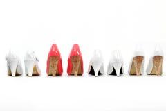 As sapatas das mulheres Imagem de Stock Royalty Free