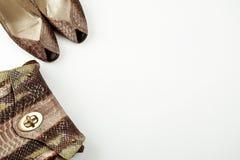 As sapatas e o saco fêmeas fizeram da imitação em uma opinião superior do fundo branco, configuração lisa da pele de serpente foto de stock royalty free