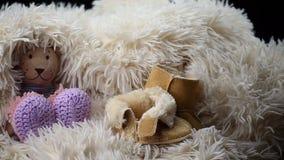 As sapatas recém-nascidas da roupa de lãs do bebê brincam o urso video estoque