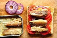 As sardinhas imprensam com tomate em um fundo de madeira Imagens de Stock Royalty Free