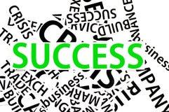 As seções do papel no sucesso Foto de Stock