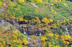 Weeping rocks with autumn foilage on the side of a mountain !. As the seasons pass, and the trees and leaves are beginning to change colors.  A trickle of water Stock Image